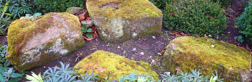 landscaping important for your home